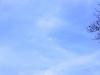 Wunschballons am Himmel_4
